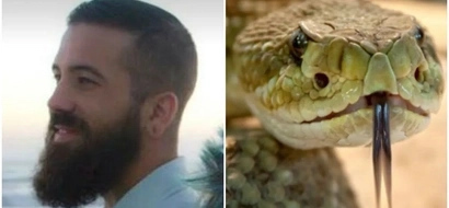 Asking for it! Man bitten on the tongue by rattlesnake while trying to KISS it (photo, video)