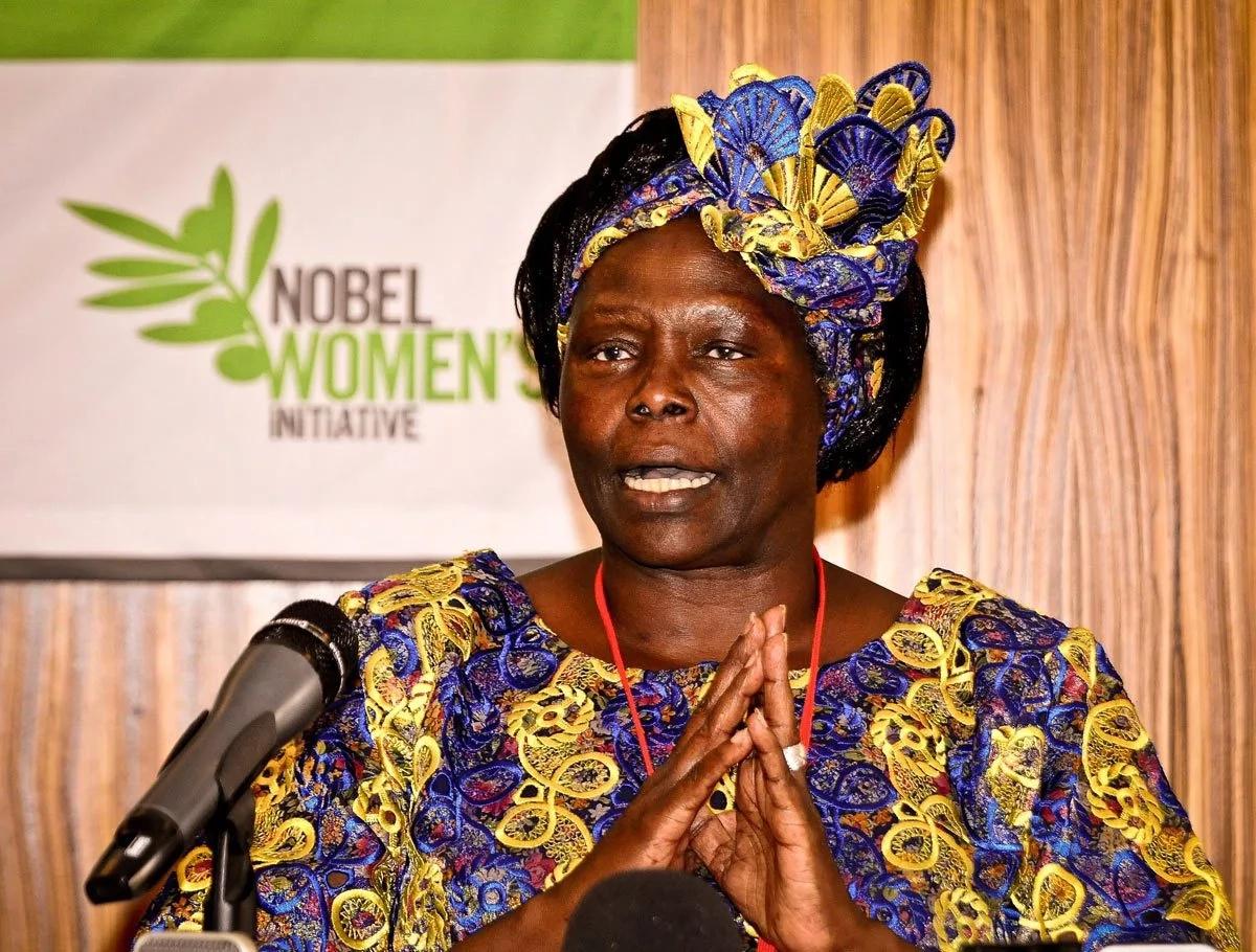 Wangari Maathai's name proposed for street in Germany