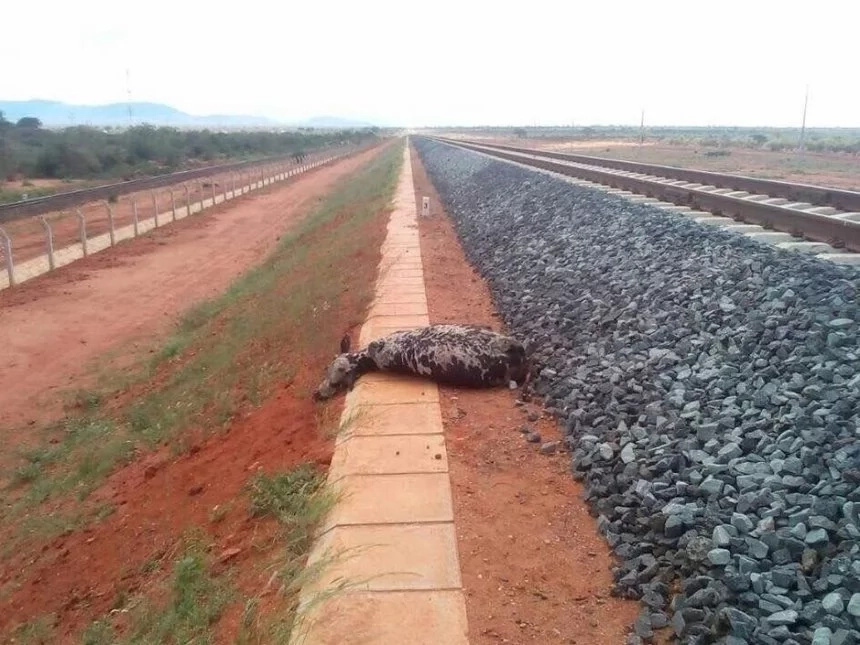 SGR train headed to Mombasa involved in 'accident'