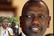 Will Mt. Kenya support Ruto in 2022? Jubilee MP speaks
