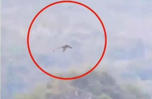 Is This A Pterodactyl Or A Dragon? Winged Creature Spotted In China