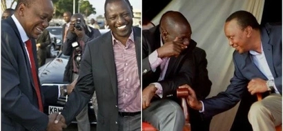 The full list of DP Ruto's recommended running mates in 2022