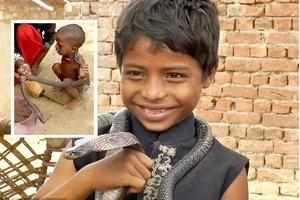 Niños en India aprenden a encantar cobras desde los dos años