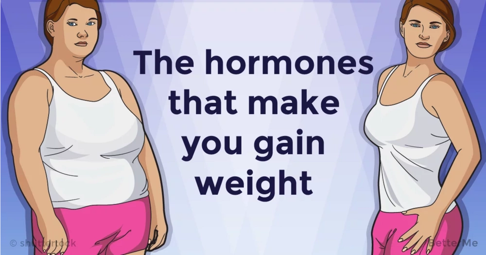 Turn off the hormones that make you gain weight