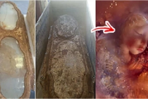 Mysterious identity of girl inside coffin that dates back to the 19th century, finally uncovered!