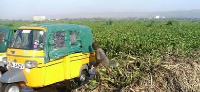 'Illegal Immigrants' From Asia Escape In Kisumu Sugar Company Raid