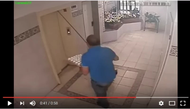 Dog Was Almost Decapitated by an Elevator, but This Hero Came from Nowhere... (Video)