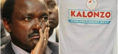 STRONG EVIDENCE hinting Kalonzo Musyoka's exit from NASA emerge (Photos)
