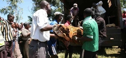 Shocking details of how Kitale man killed his brother and buried his body in a maize plantation