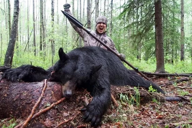Hunter spears bear to death and shares shocking POV footage
