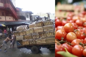 From tomato vendor to one of the wealthiest businessmen! This man applied as a janitor but didn't get hired, so he did THIS to buy his hungry kid food