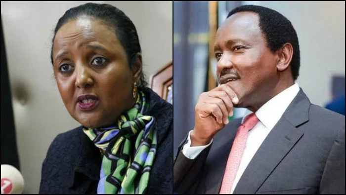Kalonzo breaks silence over being Foreign Affairs CS