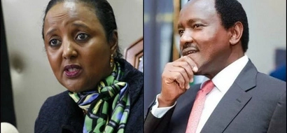 5 reasons why Kalonzo Musyoka is the best replacement for Amina Mohamed