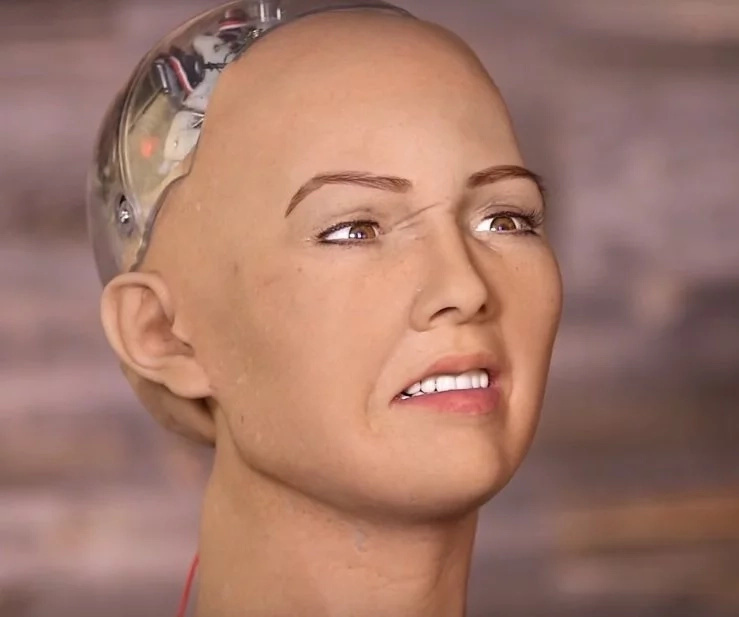 Robot warns television host about destroying humans. Was that a joke?