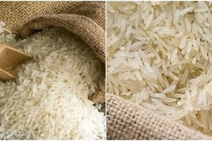 Government breaks its silence on sale of plastic rice in Kenya