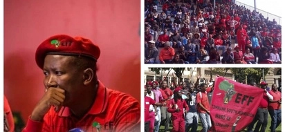 Malema claims EFF is only party which is fighting for black people