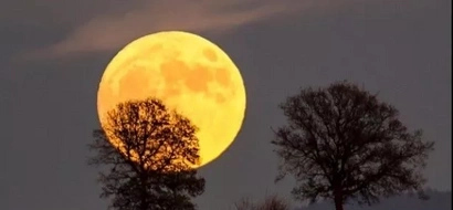 You will never see the moon this HUGE and close to earth until 2034 (PHOTOS)