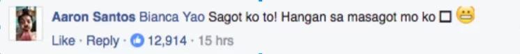 fb-netizen