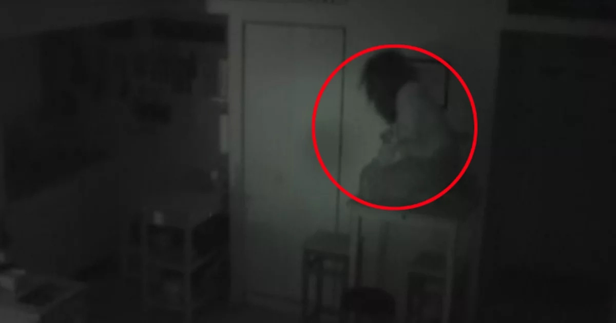 Young Man Heard Strange Sounds At The Night In The Kitchen And Couldn't Believe When Saw WHAT It Was! (VIDEO)