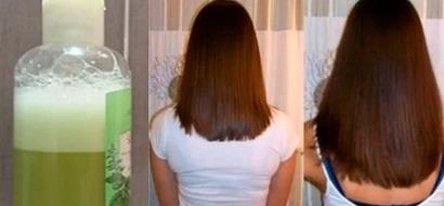 Este sencillo champú hará que tu cabello crezca como loco, todos envidiarán su esplendor, volumen y elasticidad