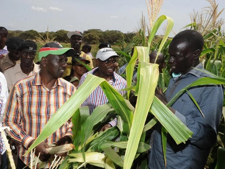 Turkana governor bashes DP Ruto