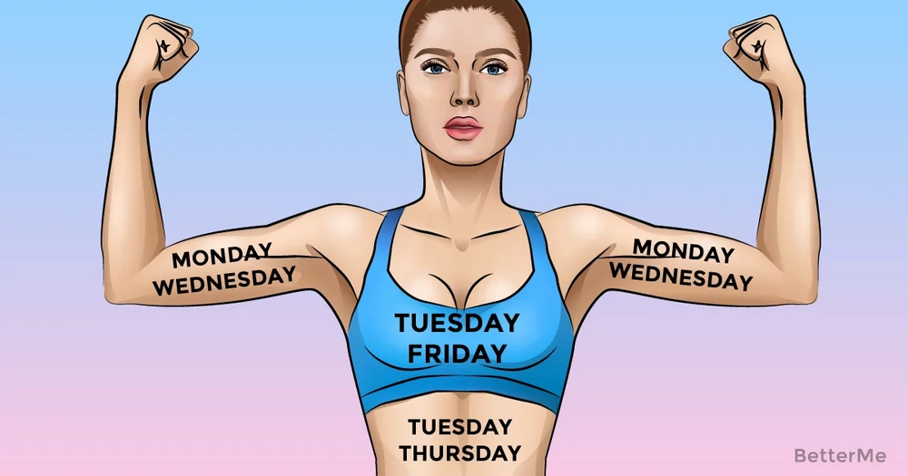 A 7-day whole body workout plan routine