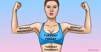 A 7-day whole body workout plan routine