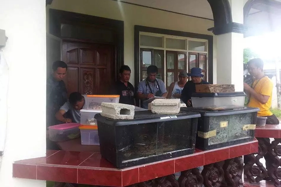DENR confiscates pet snakes of Espinosa