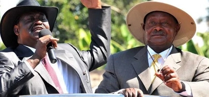 Raila Tips Uganda's Opposition On How To Defeat Museveni In Election