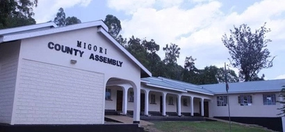 Youths Storm Migori County Assembly, Beat Up MCAs