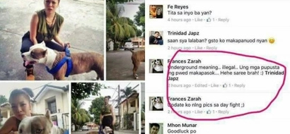 Ruthless Pinay gets flak for entering pet dog in underground fight