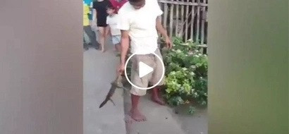 Huge lizard bites sleeping man....what the man did in return was really unexpected!
