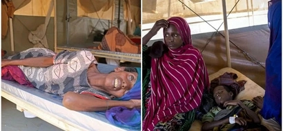 UK still feeding Africa? Britons donate Ksh5.1 BILLION in just 22 days for starving Africans (photos)