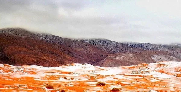 Surprise as snow falls in the Sahara desert for first time in over 37 years
