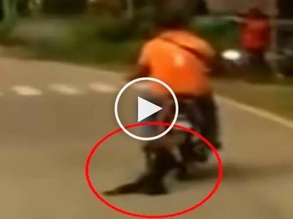 Pinoy rider caught on video dragging poor dog behind motorcycle