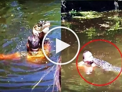 This daring tour guide jumped in the water filled with deadly alligators and fed them from his mouth!
