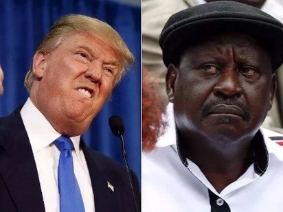 US firm that worked for Trump smeared online attacks against Raila during election period - Report