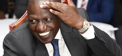 William Ruto akitafuna MAHINDI CHOMA na picha zingine 9 za kusisimua kumhusu naibu rais!