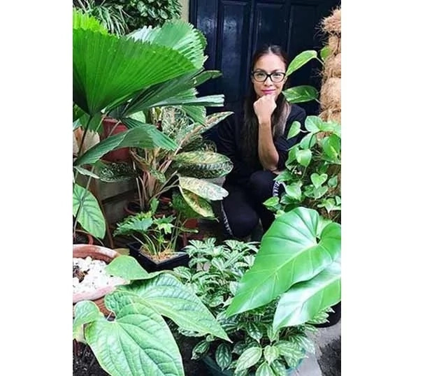 """Aubrey Miles' unique home is a paradise on Earth: """"My house is a jungle!"""""""