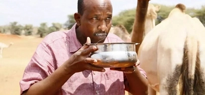 This is the drastic action Kalonzo and CORD will take if Duale is not arrested