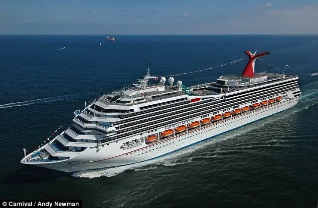 Search launched for man, 32, who jumped off cruise ship while on honeymoon (photos)