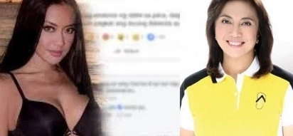 VP Leni on Mocha's blog: I don't intend to read it