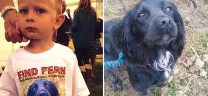 Ethan, de 4 años, escribió al hombre malo que robó su perrita