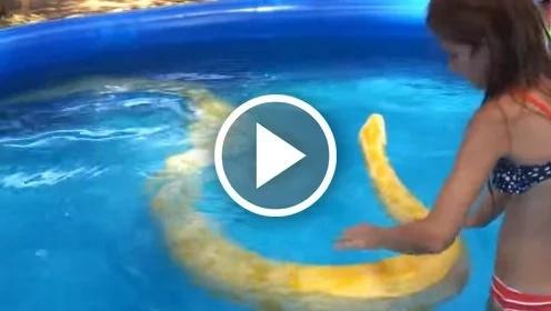Mira a esta niña nadar en una piscina con una pitón gigante