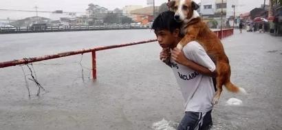 Reconfortante: Niño carga a un perro para evitar que se ahogue en las aguas de una inundación