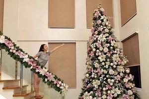 Nakakalula sa laki! Kim Chiu proudly shows off her enormous Christmas tree