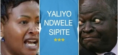 Methali 10 'za' Wavinya Ndeti zitakazokuacha ukibingirika kwa kicheko