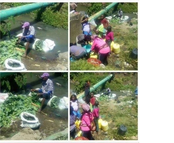 Disturbing photo of vendor washing sukuma wiki in a sewage