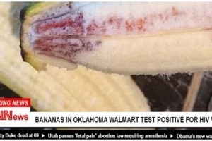 HIV virus found in BANANAS after 10-year-old boy allegedly contracts virus from fruit (photo)