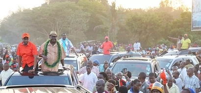 Opinion poll gives ODM candidate massive lead in Malindi by-election